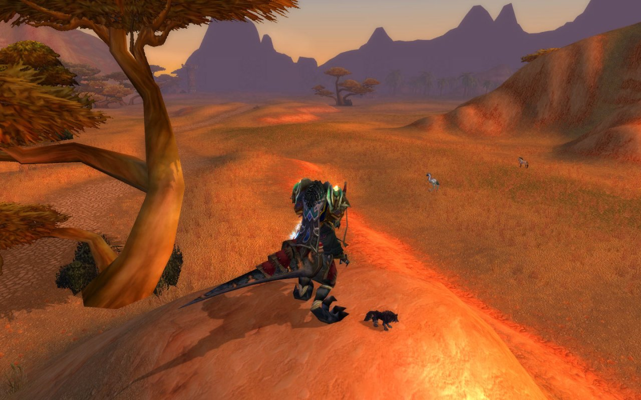 Looking over the barrens